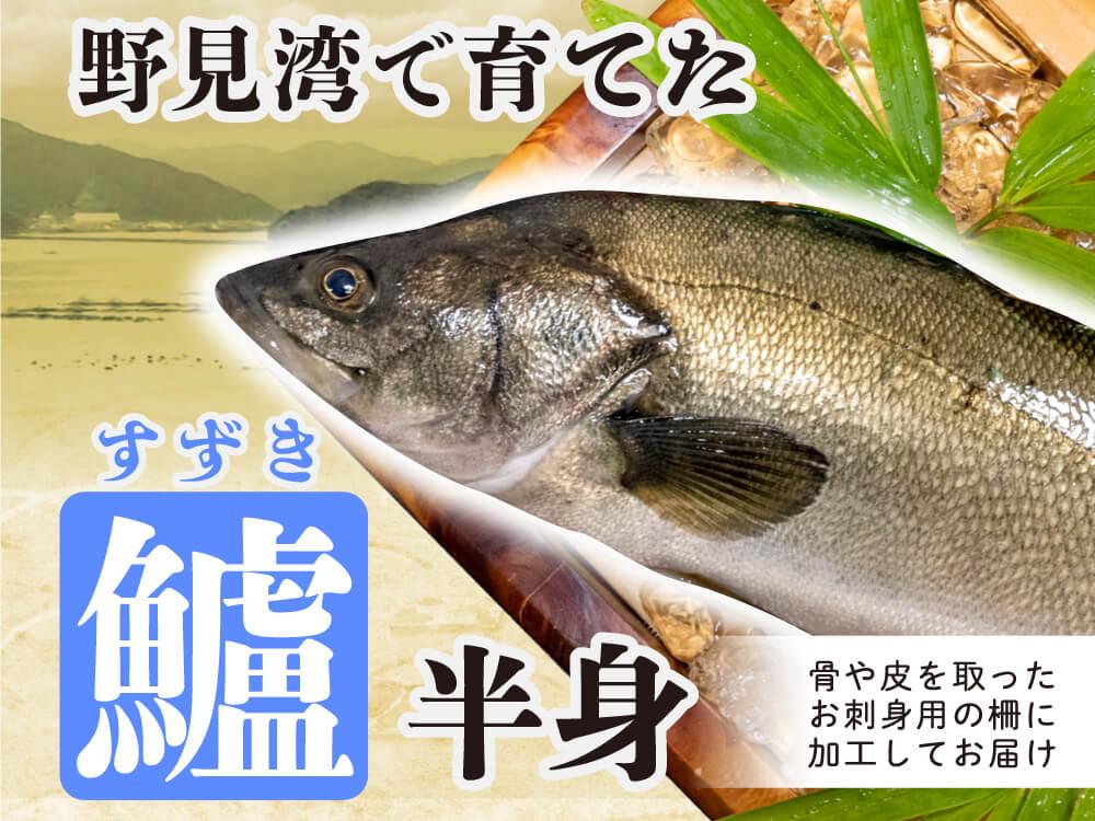 野見湾で育った夏の高級魚「スズキ」お刺身用・半身